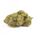 Acapulco Gold feminized seeds bud thumbnail