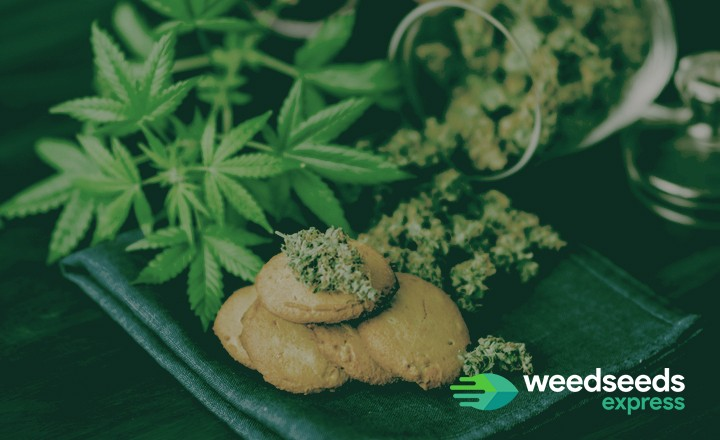 So, what are the best strains for edibles? Check this top 5!