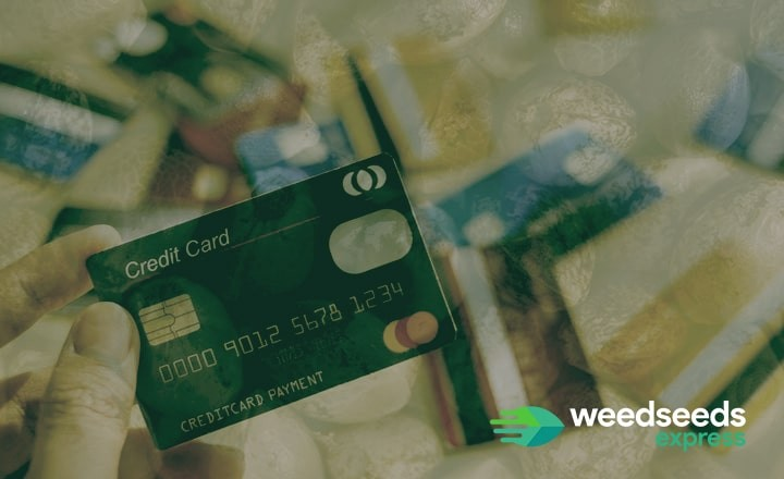 How to buy weed seeds with credit card? Read this blog!
