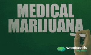 How to grow medical marijuana?