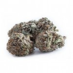 Durban Poison feminized seeds bud thumbnail
